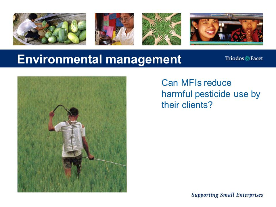 Can MFIs reduce harmful pesticide use by their clients? Environmental management