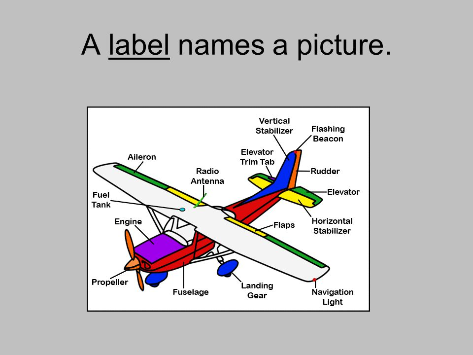 A label names a picture.
