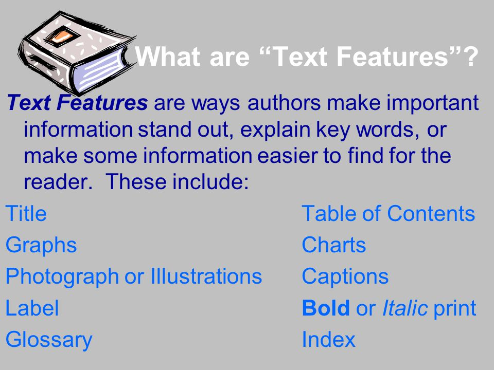 What are Text Features .