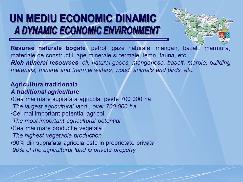 Resurse naturale bogate: petrol, gaze naturale, mangan, bazalt, marmura, materiale de constructii, ape minerale si termale, lemn, fauna, etc.