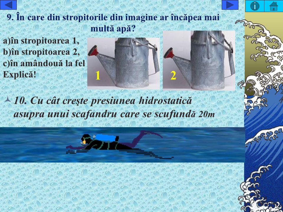 9.În care din stropitorile din imagine ar încăpea mai multă apă.