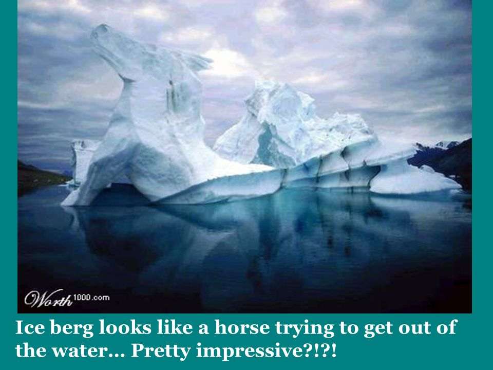 Ice berg looks like a horse trying to get out of the water… Pretty impressive?!?!