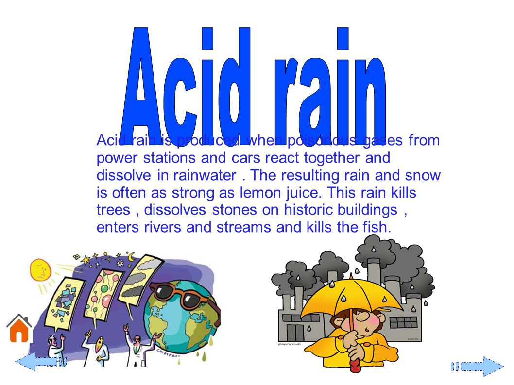 Acid rain is produced when poisonous gases from power stations and cars react together and dissolve in rainwater.