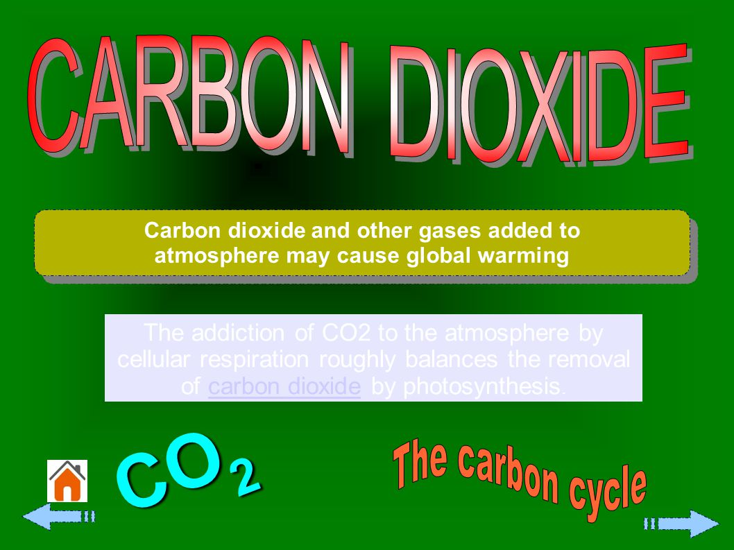 All fossil fuels and many other fuels contain carbon.