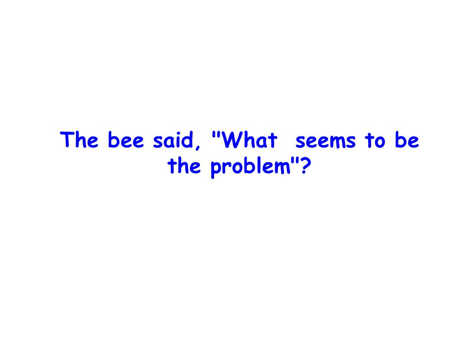 The bee said, What seems to be the problem