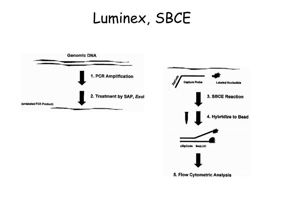 Luminex, SBCE