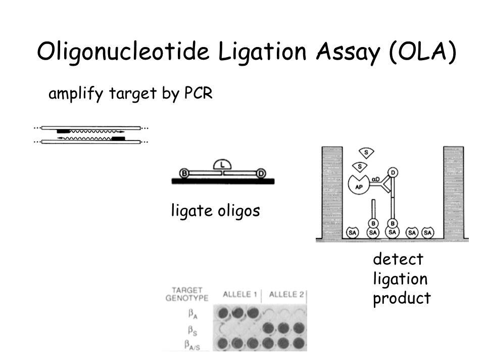Oligonucleotide Ligation Assay (OLA) amplify target by PCR ligate oligos detect ligation product