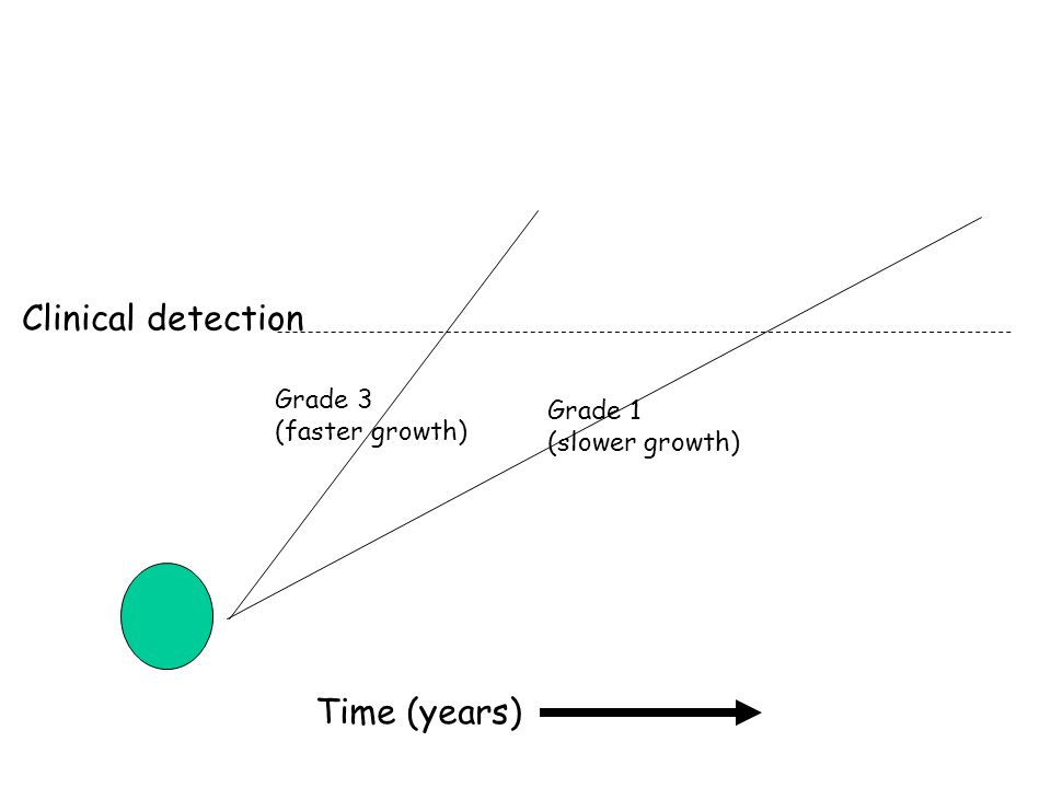Clinical detection Time (years) Grade 3 (faster growth) Grade 1 (slower growth)