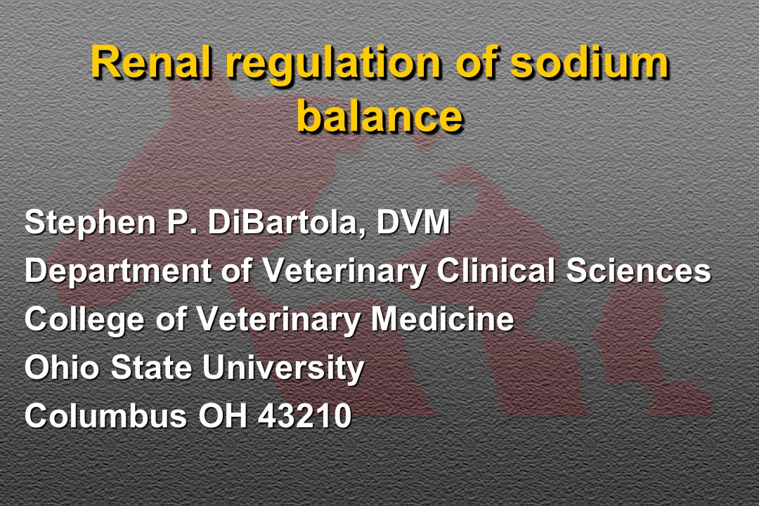 Renal regulation of sodium balance Stephen P.