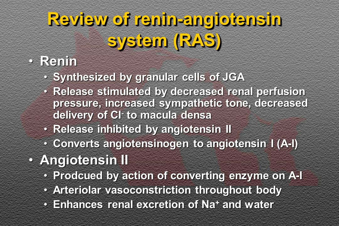Review of renin-angiotensin system (RAS) ReninRenin Synthesized by granular cells of JGASynthesized by granular cells of JGA Release stimulated by decreased renal perfusion pressure, increased sympathetic tone, decreased delivery of Cl - to macula densaRelease stimulated by decreased renal perfusion pressure, increased sympathetic tone, decreased delivery of Cl - to macula densa Release inhibited by angiotensin IIRelease inhibited by angiotensin II Converts angiotensinogen to angiotensin I (A-I)Converts angiotensinogen to angiotensin I (A-I) Angiotensin IIAngiotensin II Prodcued by action of converting enzyme on A-IProdcued by action of converting enzyme on A-I Arteriolar vasoconstriction throughout bodyArteriolar vasoconstriction throughout body Enhances renal excretion of Na + and waterEnhances renal excretion of Na + and water