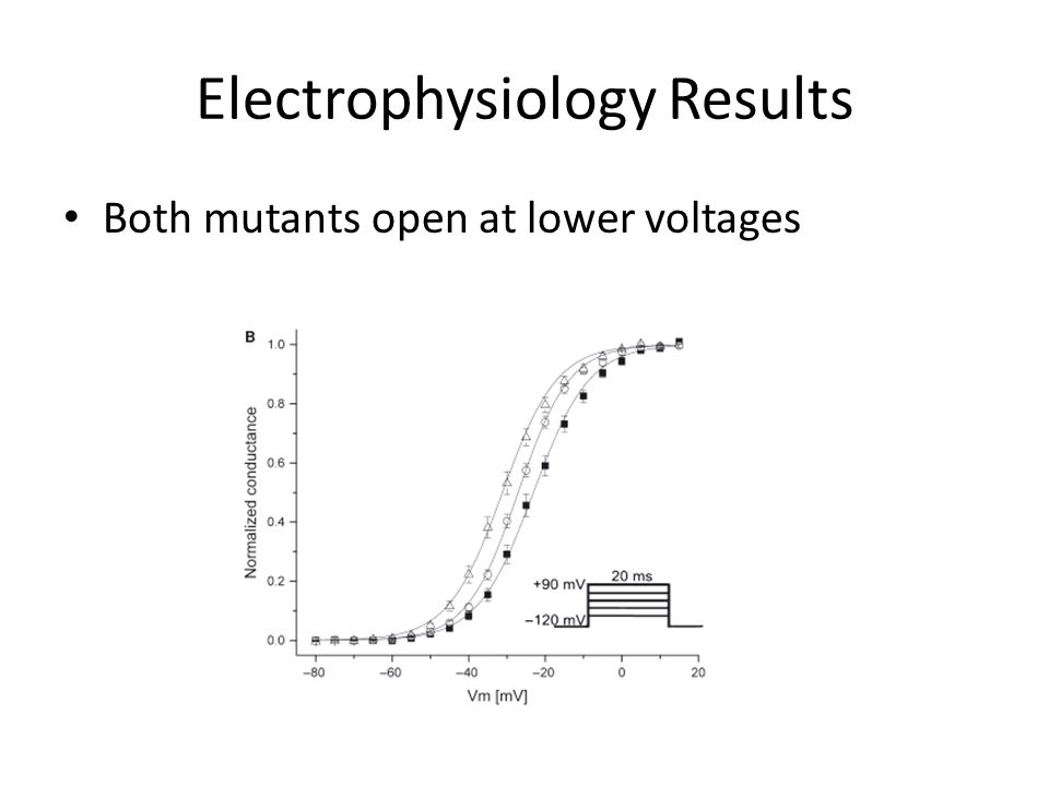 Electrophysiology Results Both mutants open at lower voltages