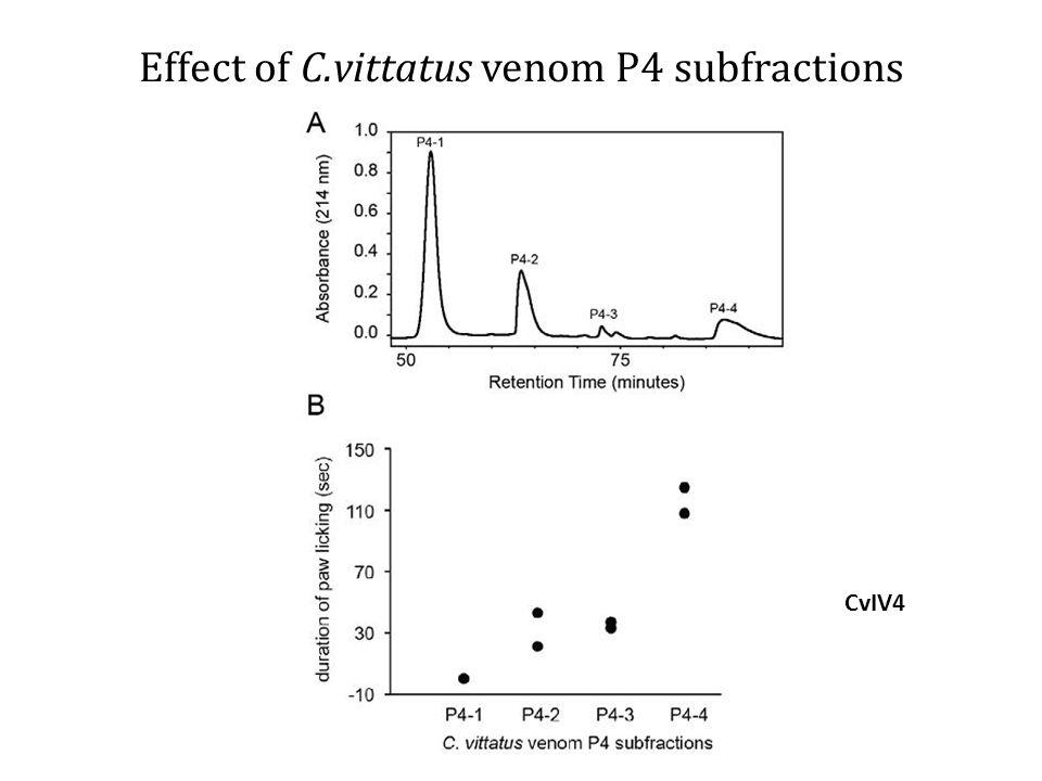 Effect of C.vittatus venom P4 subfractions CvIV4