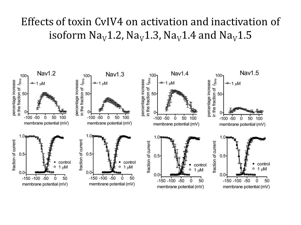 Effects of toxin CvIV4 on activation and inactivation of isoform Na V 1.2, Na V 1.3, Na V 1.4 and Na V 1.5