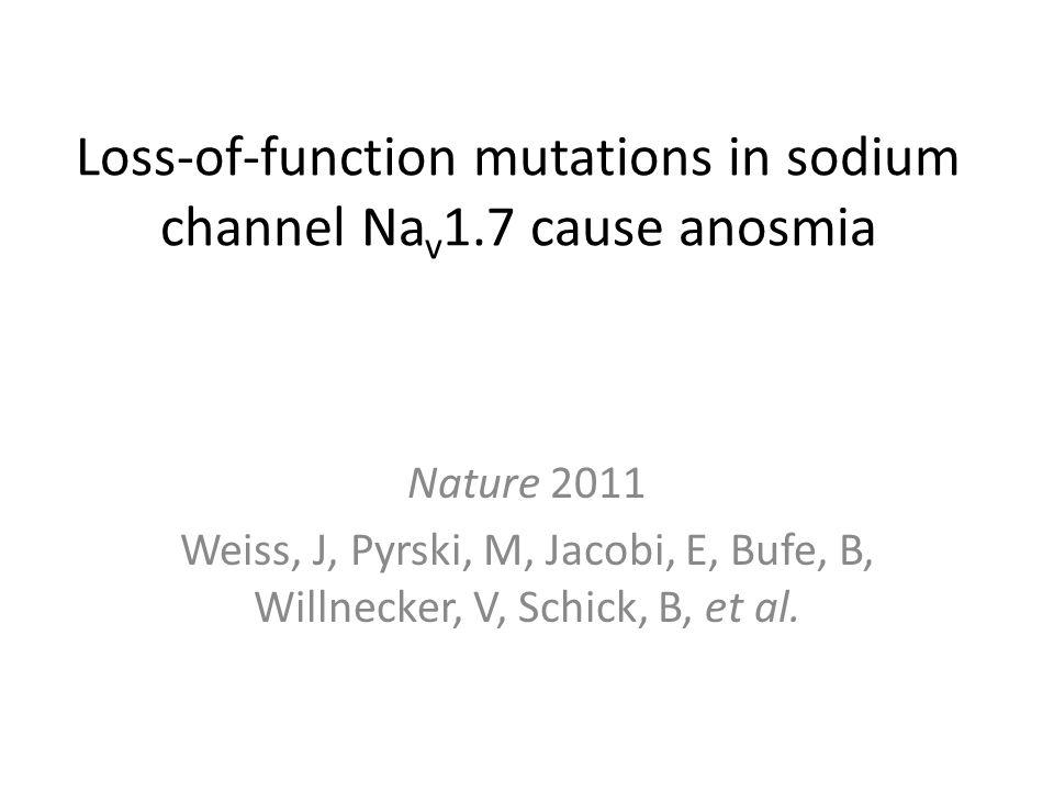 Loss-of-function mutations in sodium channel Na v 1.7 cause anosmia Nature 2011 Weiss, J, Pyrski, M, Jacobi, E, Bufe, B, Willnecker, V, Schick, B, et al.