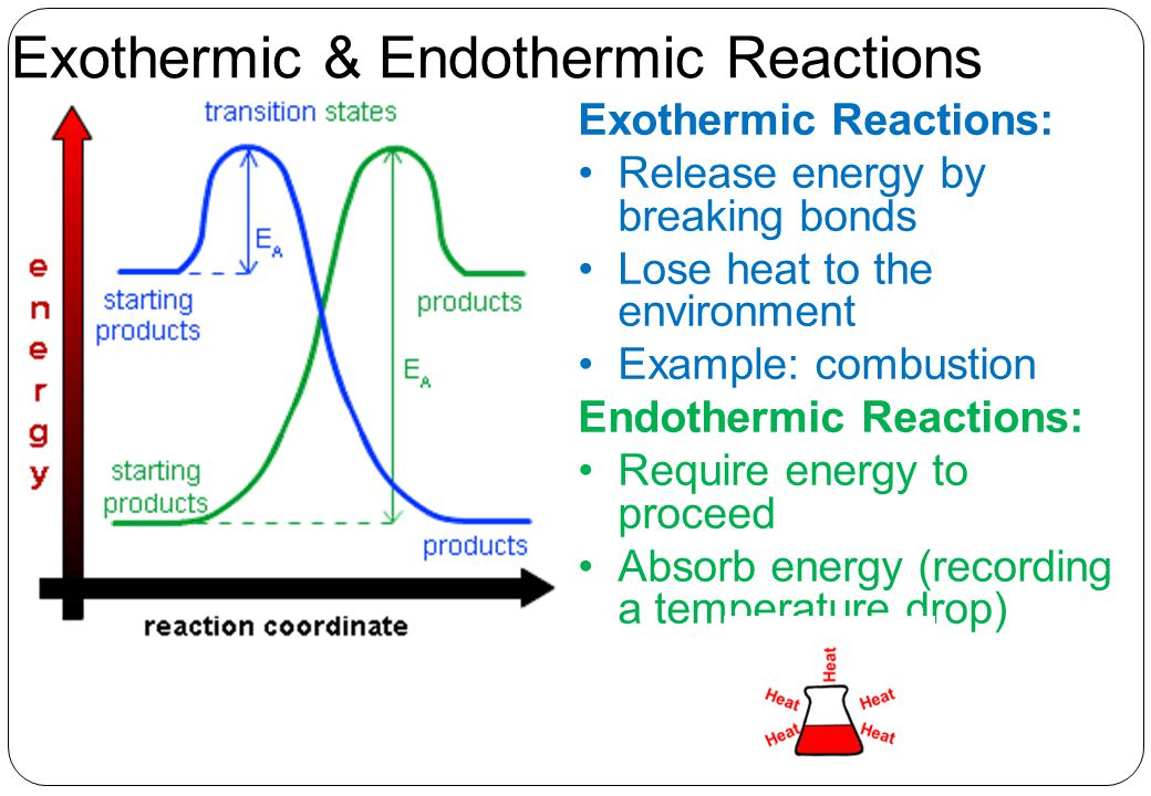 Exothermic & Endothermic Reactions Exothermic Reactions: Release energy by breaking bonds Lose heat to the environment Example: combustion Endothermic Reactions: Require energy to proceed Absorb energy (recording a temperature drop)