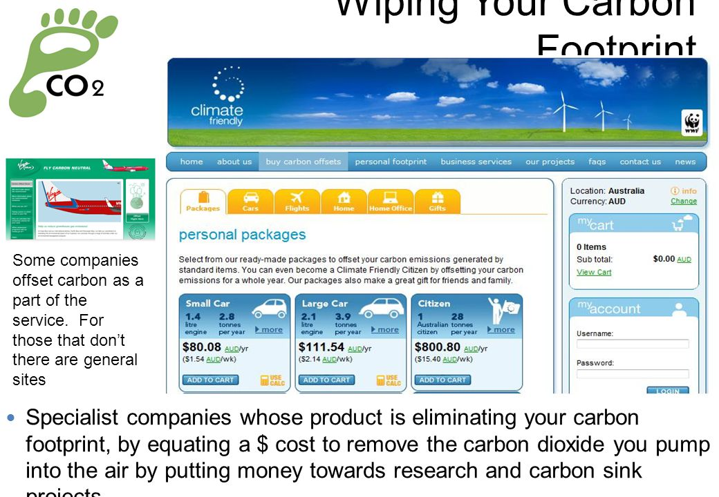 Wiping Your Carbon Footprint Specialist companies whose product is eliminating your carbon footprint, by equating a $ cost to remove the carbon dioxide you pump into the air by putting money towards research and carbon sink projects.