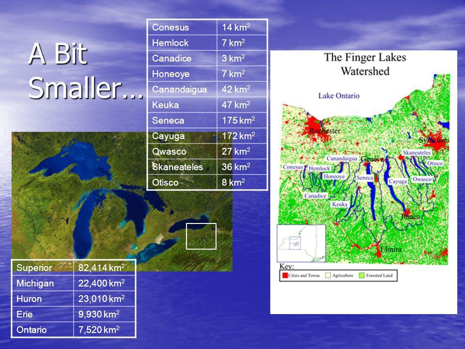 A Bit Smaller… Superior82,414 km 2 Michigan22,400 km 2 Huron23,010 km 2 Erie9,930 km 2 Ontario7,520 km 2 Conesus14 km 2 Hemlock7 km 2 Canadice3 km 2 Honeoye7 km 2 Canandaigua42 km 2 Keuka47 km 2 Seneca175 km 2 Cayuga172 km 2 Owasco27 km 2 Skaneateles36 km 2 Otisco8 km 2