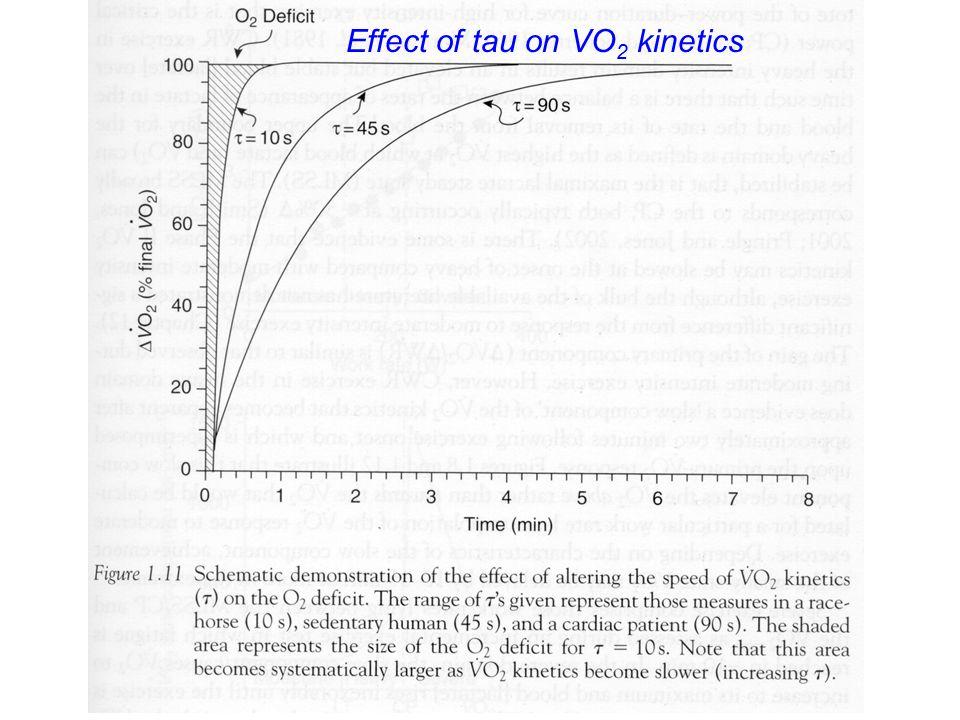 Effect of tau on VO 2 kinetics
