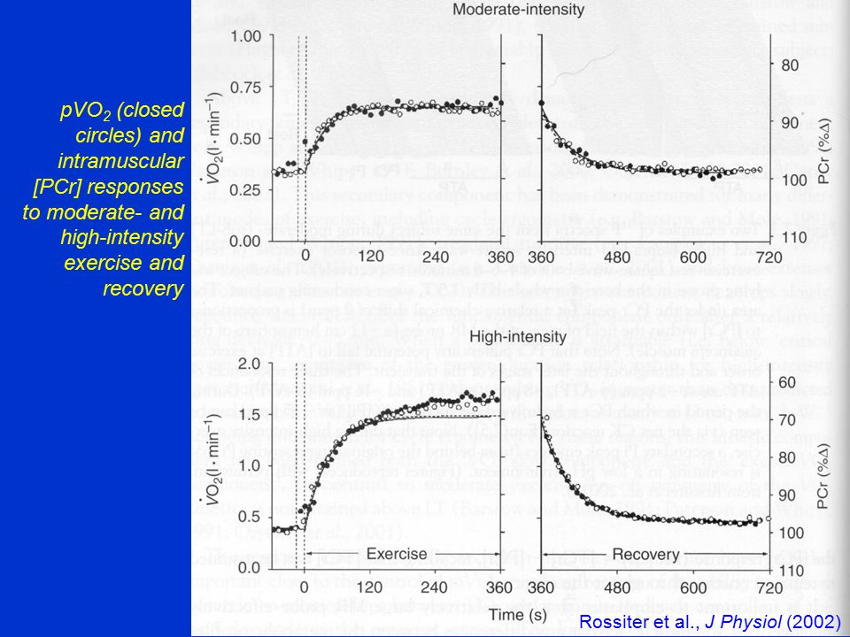 pVO 2 (closed circles) and intramuscular [PCr] responses to moderate- and high-intensity exercise and recovery Rossiter et al., J Physiol (2002)