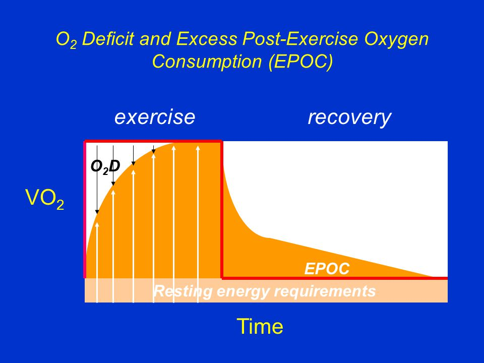 O 2 Deficit and Excess Post-Exercise Oxygen Consumption (EPOC) VO 2 Time Resting energy requirements EPOC O2DO2D exerciserecovery