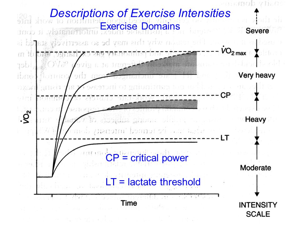 CP = critical power LT = lactate threshold Descriptions of Exercise Intensities Exercise Domains