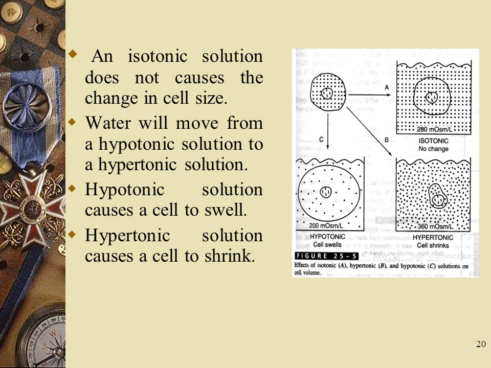 20  An isotonic solution does not causes the change in cell size.  Water will move from a hypotonic solution to a hypertonic solution.  Hypotonic s