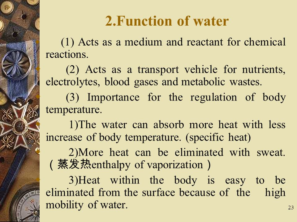 23 2.Function of water  (1) Acts as a medium and reactant for chemical reactions.  (2) Acts as a transport vehicle for nutrients, electrolytes, bloo