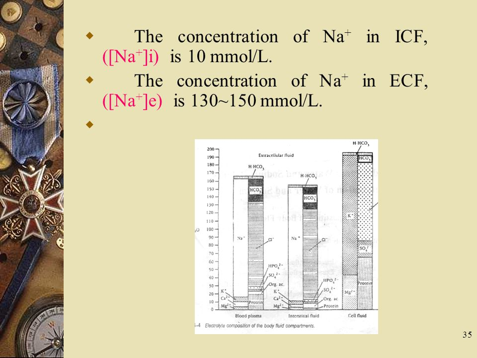35  The concentration of Na + in ICF, ([Na + ]i) is 10 mmol/L.  The concentration of Na + in ECF, ([Na + ]e) is 130~150 mmol/L. 