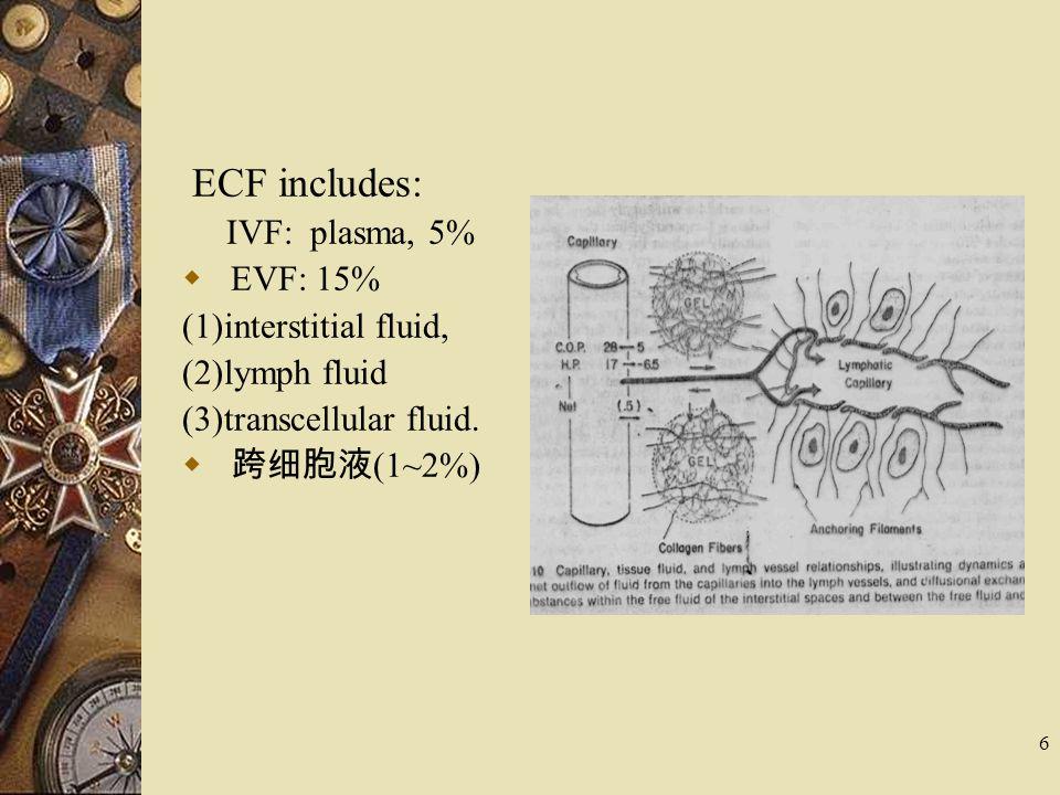 6 ECF includes: IVF: plasma, 5%  EVF: 15% (1)interstitial fluid, (2)lymph fluid (3)transcellular fluid.  跨细胞液 (1~2%)