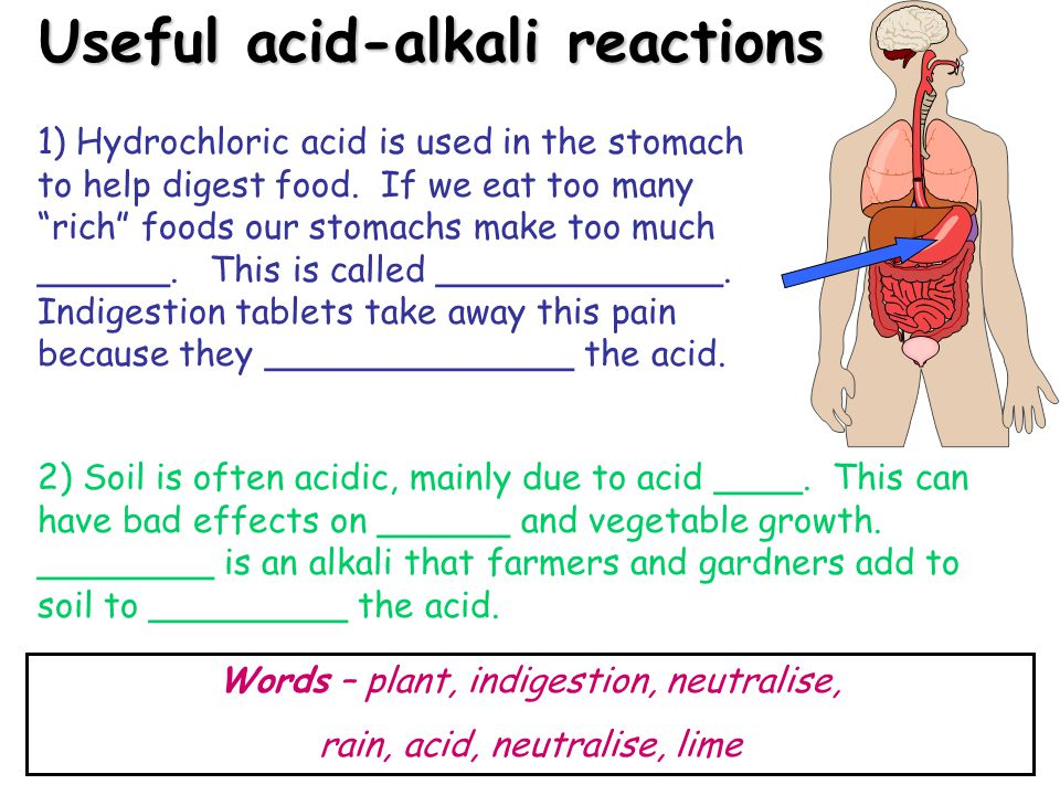 Useful acid-alkali reactions 1) Hydrochloric acid is used in the stomach to help digest food.