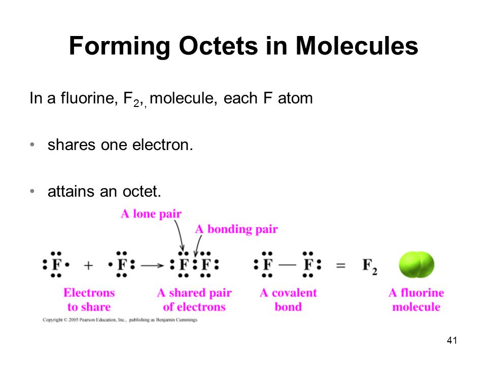 41 Forming Octets in Molecules In a fluorine, F 2,, molecule, each F atom shares one electron. attains an octet.