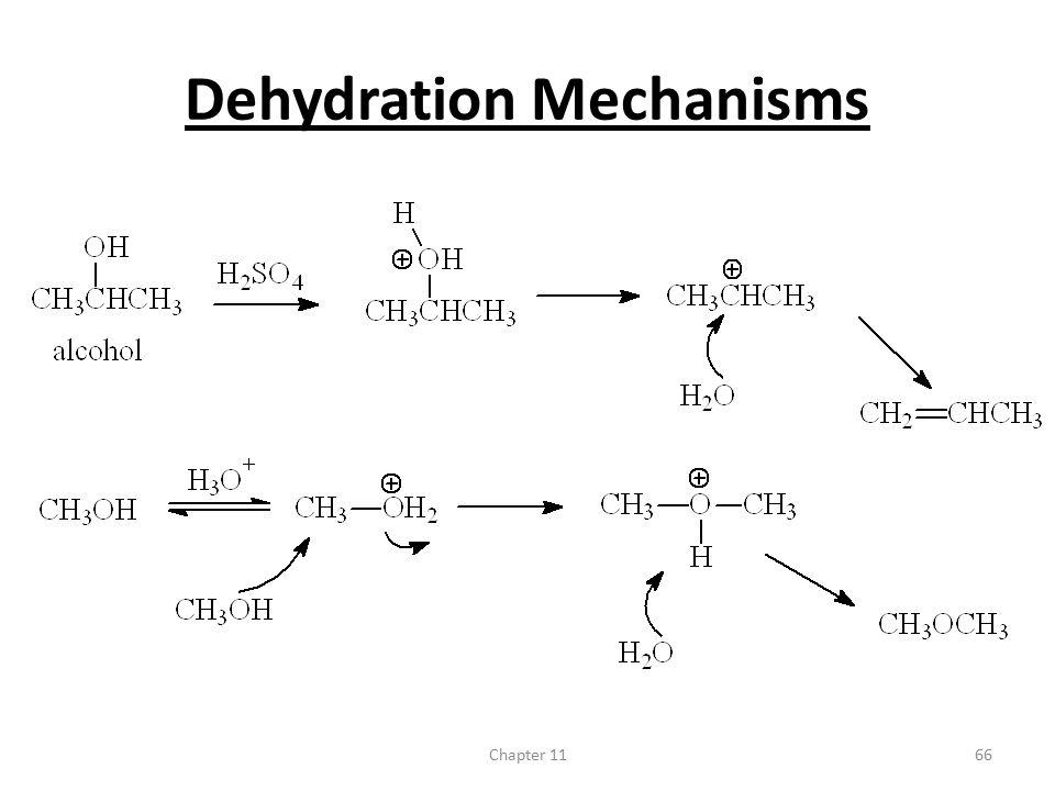 Chapter 1166 Dehydration Mechanisms