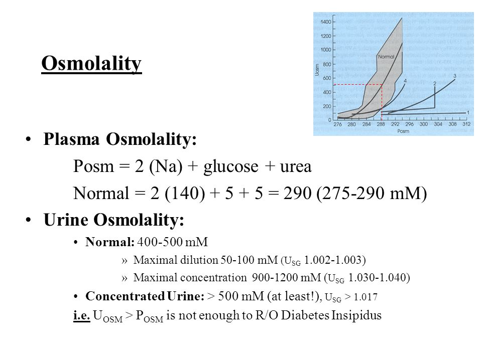 Osmolality Plasma Osmolality: Posm = 2 (Na) + glucose + urea Normal = 2 (140) + 5 + 5 = 290 (275-290 mM) Urine Osmolality: Normal: 400-500 mM »Maximal