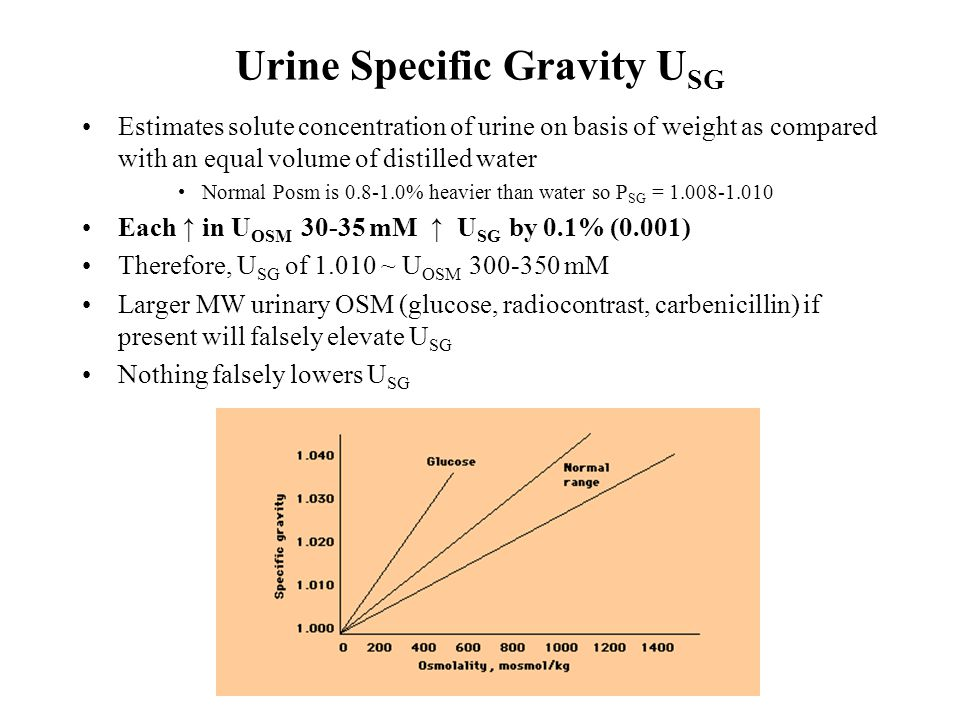 Urine Specific Gravity U SG Estimates solute concentration of urine on basis of weight as compared with an equal volume of distilled water Normal Posm