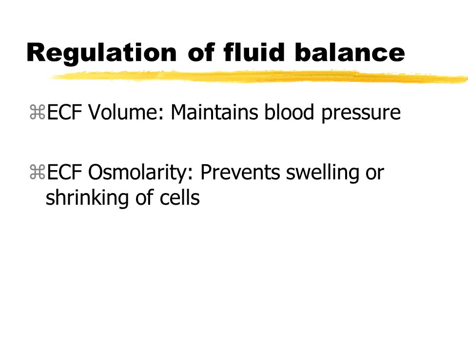 Regulation of fluid balance zECF Volume: Maintains blood pressure zECF Osmolarity: Prevents swelling or shrinking of cells