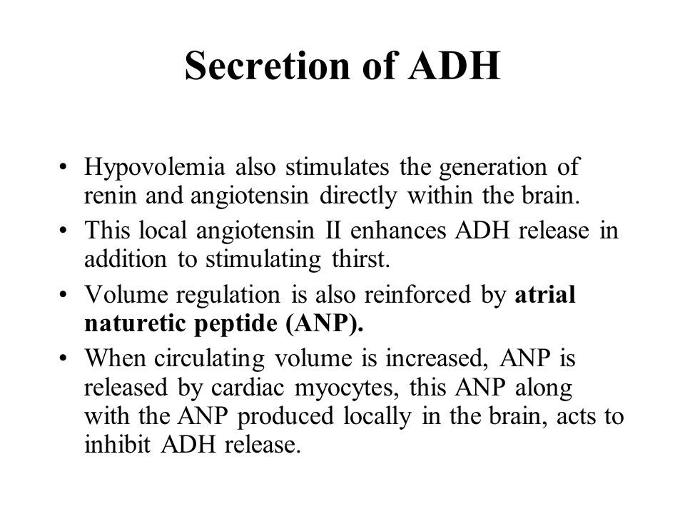 Hypovolemia also stimulates the generation of renin and angiotensin directly within the brain.