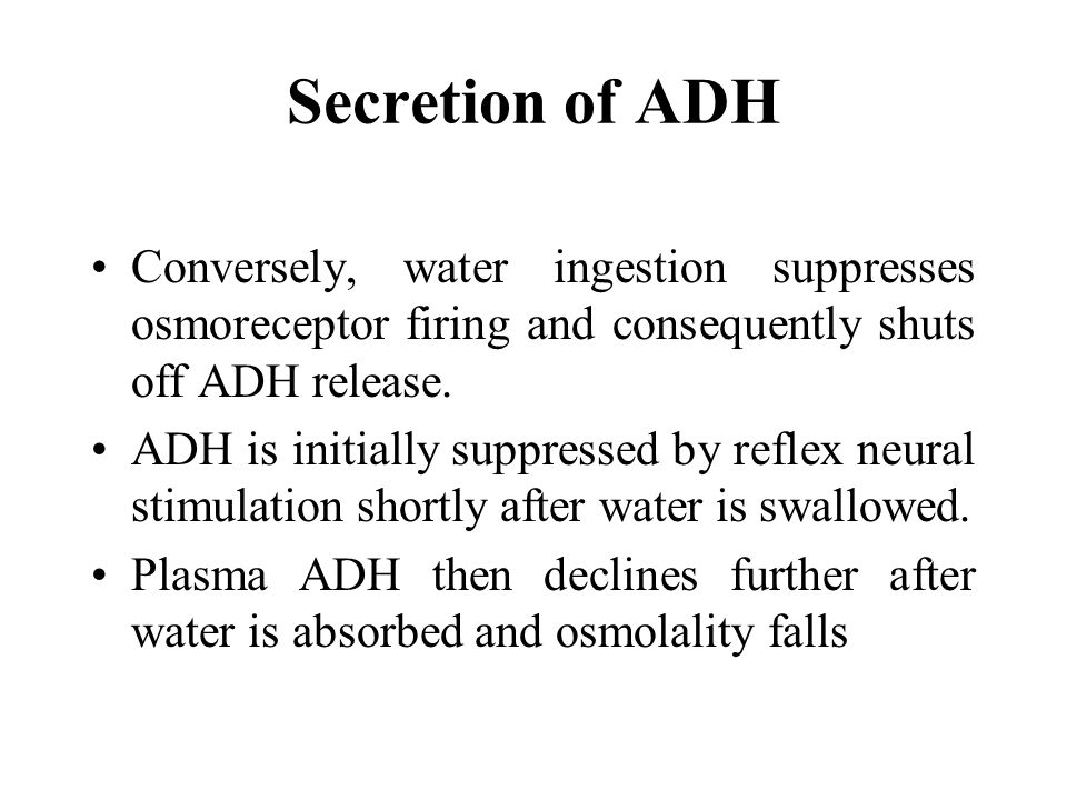 Conversely, water ingestion suppresses osmoreceptor firing and consequently shuts off ADH release.