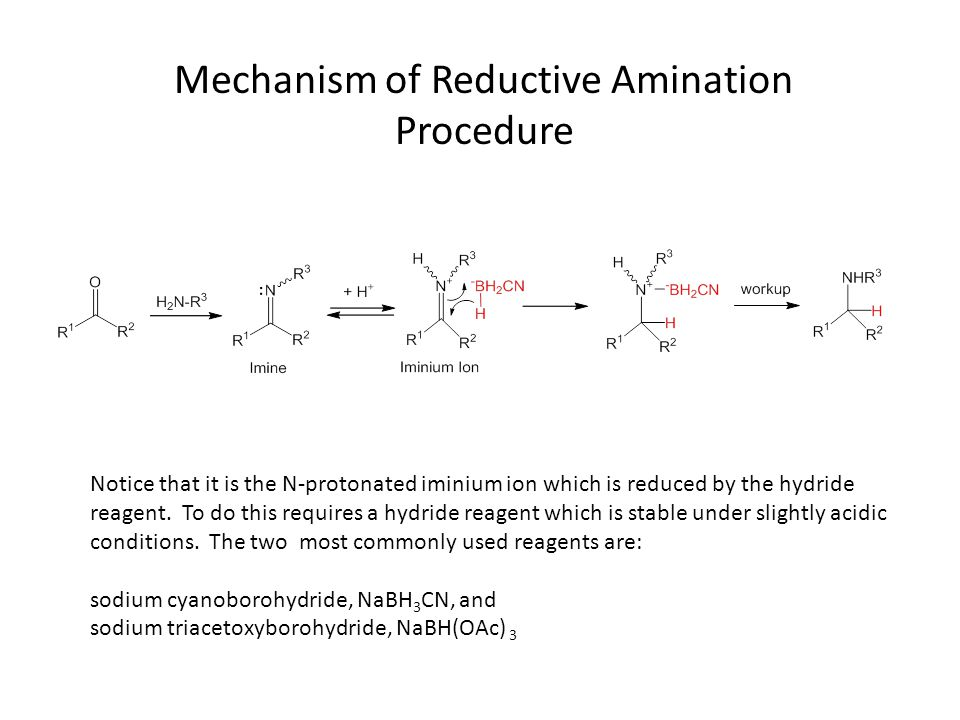 Mechanism of Reductive Amination Procedure Notice that it is the N-protonated iminium ion which is reduced by the hydride reagent.
