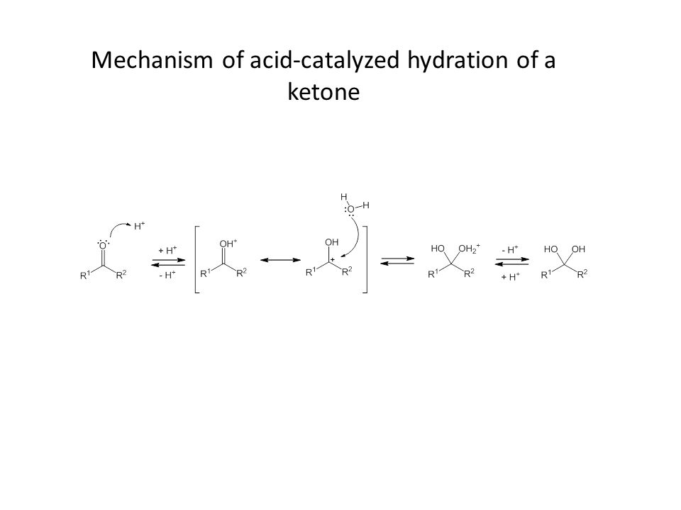 Mechanism of acid-catalyzed hydration of a ketone