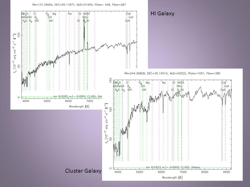 HI Galaxy Cluster Galaxy