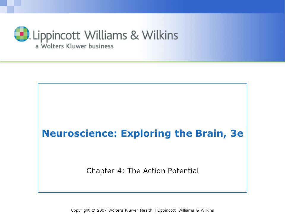 Copyright © 2007 Wolters Kluwer Health | Lippincott Williams & Wilkins Introduction Action Potential in the Nervous System –Conveys information over long distances –Cytosol has negative charge relative to extracellular space –Neural code - frequency and pattern –Action potential Spike Nerve impulse Discharge