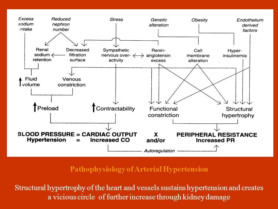 INSULINRESISTANCESYNDROMEINSULINRESISTANCESYNDROME HYPERINSULINE- MIA CORONARY DISEASE CORONARY DISEASE DYSLIPIDE- MIA HYPERURICE- MIA MICRO- ALBUMINOURIA MICRO- ALBUMINOURIA CENTRAL ADIPOSITY IGT HYPERTENS METABOLIC SYNDROME Χ