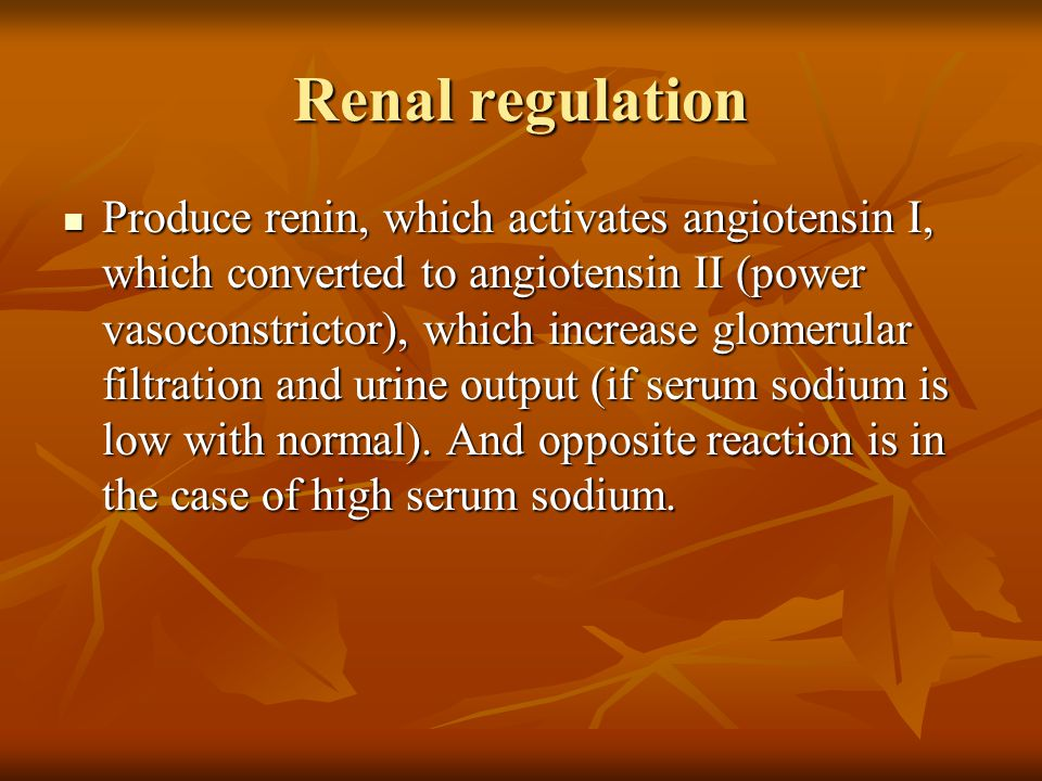 Renal regulation Produce renin, which activates angiotensin I, which converted to angiotensin II (power vasoconstrictor), which increase glomerular fi