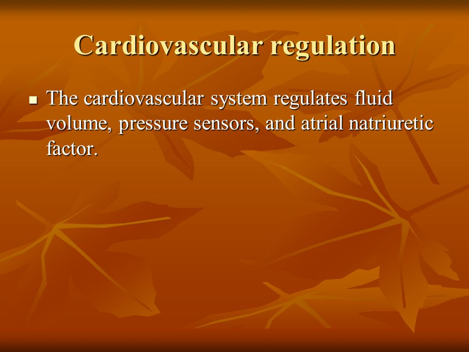 Cardiovascular regulation The cardiovascular system regulates fluid volume, pressure sensors, and atrial natriuretic factor. The cardiovascular system