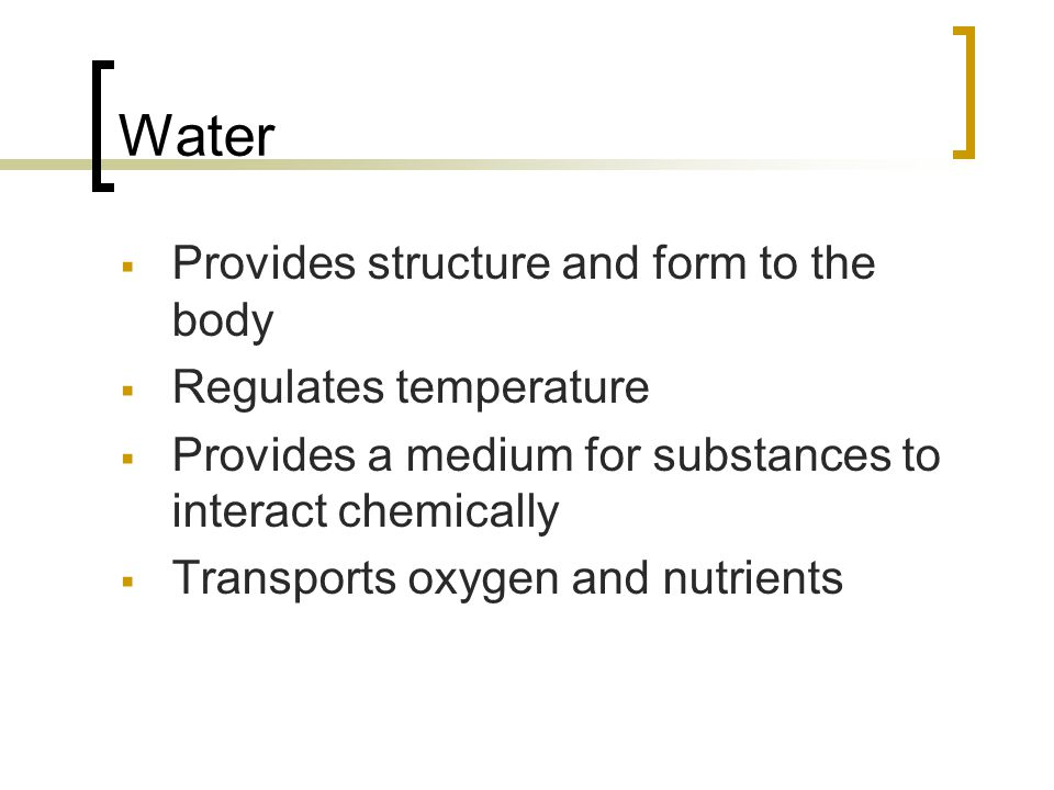 Water  Provides structure and form to the body  Regulates temperature  Provides a medium for substances to interact chemically  Transports oxygen and nutrients