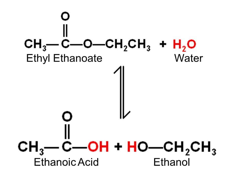 Ethyl Ethanoate Ethanoic Acid Water Ethanol