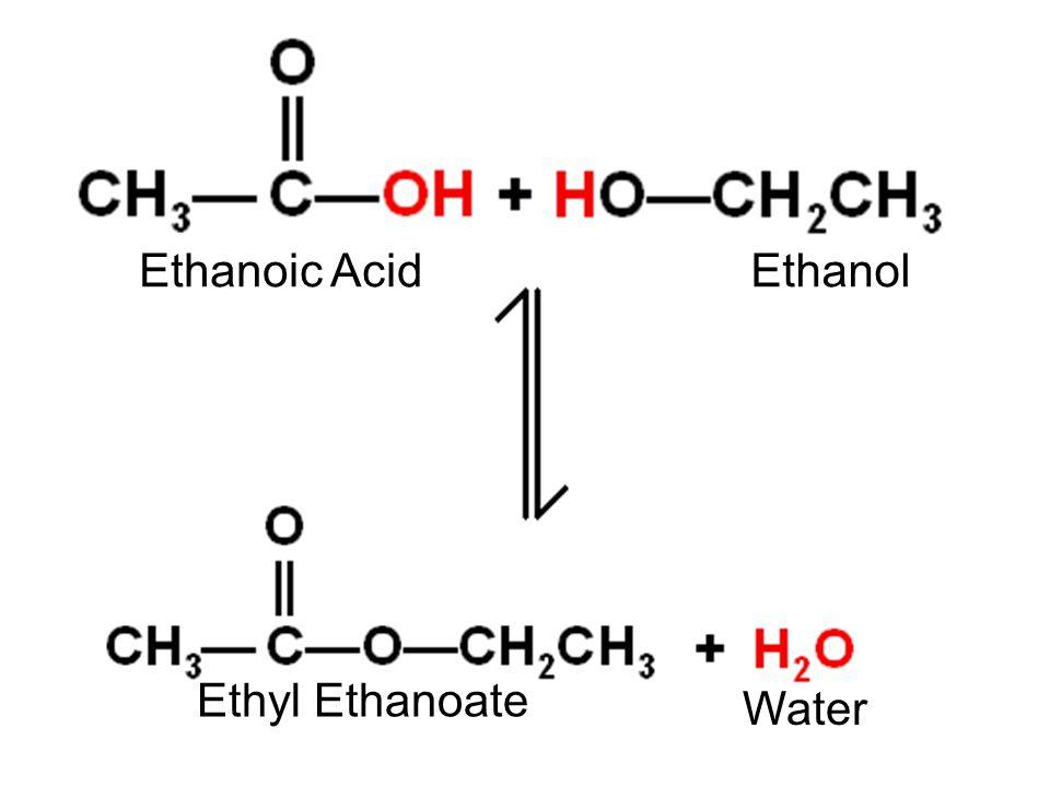 Ethanoic Acid Water Ethanol Ethyl Ethanoate