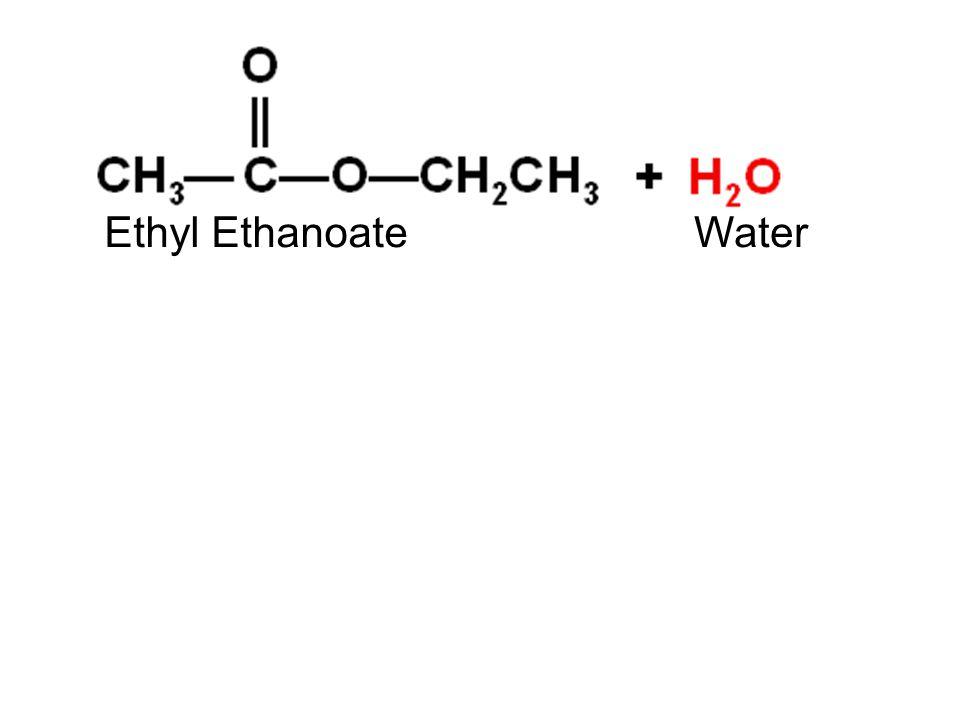 Ethyl EthanoateWater