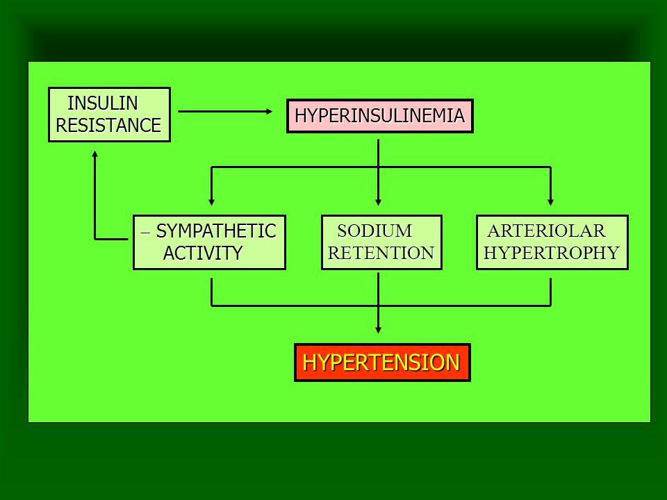 INSULIN INSULINRESISTANCE HYPERINSULINEMIA ARTERIOLAR ARTERIOLARHYPERTROPHY SODIUM SODIUMRETENTION  SYMPATHETIC ACTIVITY ACTIVITY HYPERTENSION