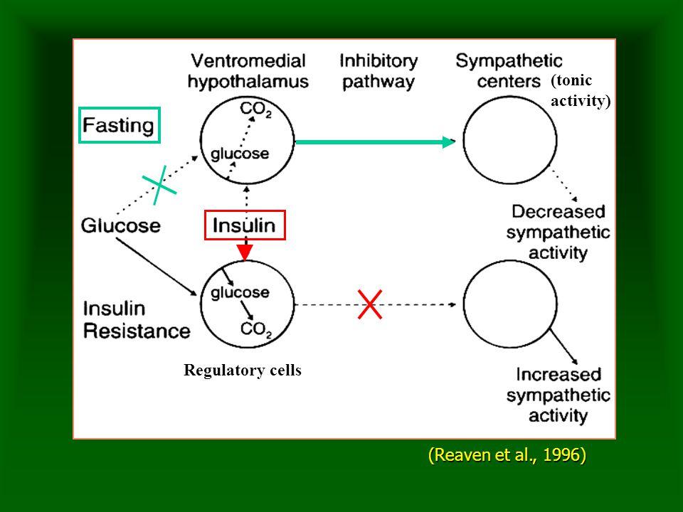 (Reaven et al., 1996) Regulatory cells (tonicactivity)